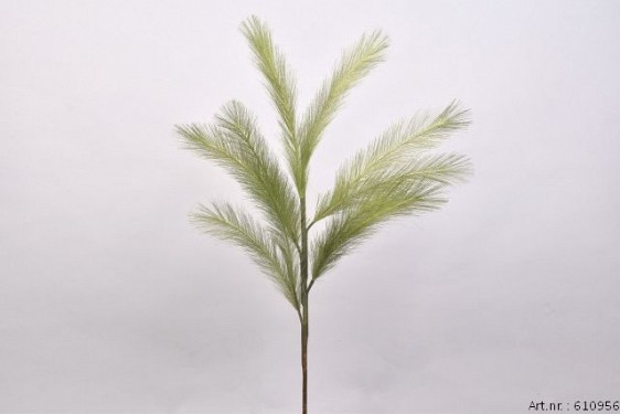 DRY PLUM BRANCH GREEN 72CM