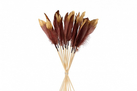 FEATHERS BURGUNDY/GOLD OP STOK 30CM P/24