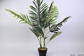 PLANT ARECA PALM IN POT GREEN D70XL100CM
