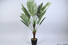 PLANT PALM IN POT GREEN D70XL100CM