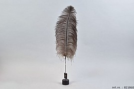 FEATHER OSTRICH ON FOOT NATURAL PER 1