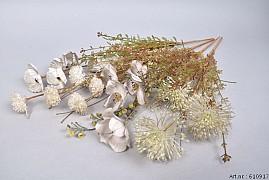 DRY SILK WILD FLOWERS IVORY 58CM ASS PER 1