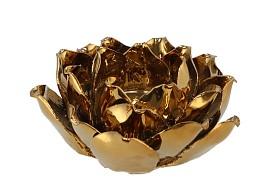 WAXINE SUCCULENT MAGNOLIA SHINY GOLD 10X11CM